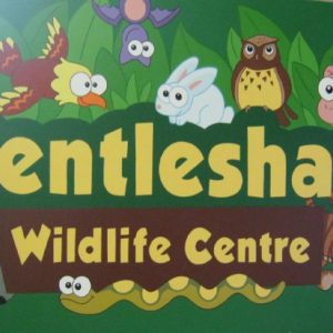 Gentleshaw Wildlife Centre | Friends and Canines
