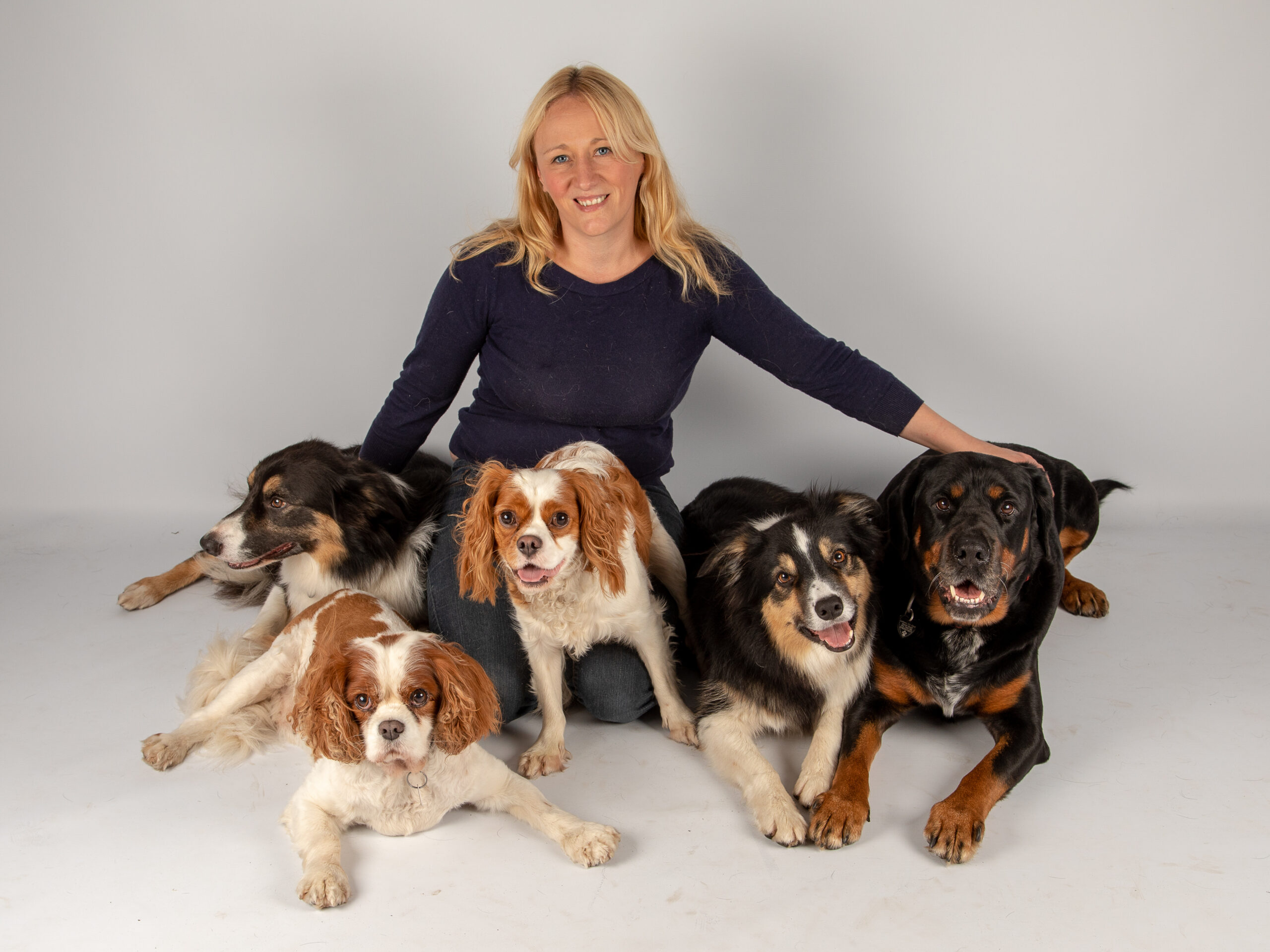 Friends and Canines - Meet The Team