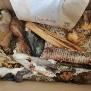 Monthly Dog Treat Box