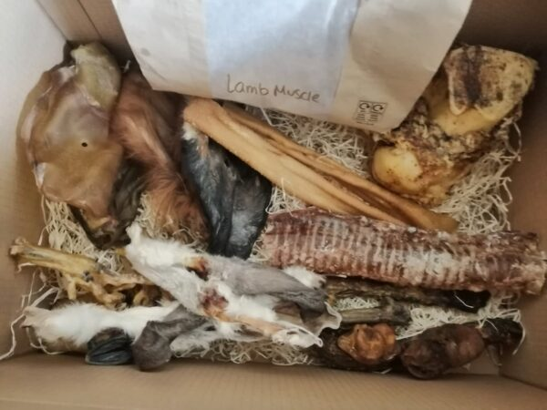 Monthly Dog Treat Box