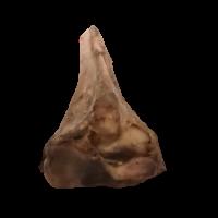 Ostrich Dog Chew