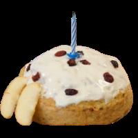 Dog Birthday Cake Mix
