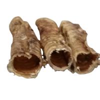 short trachea