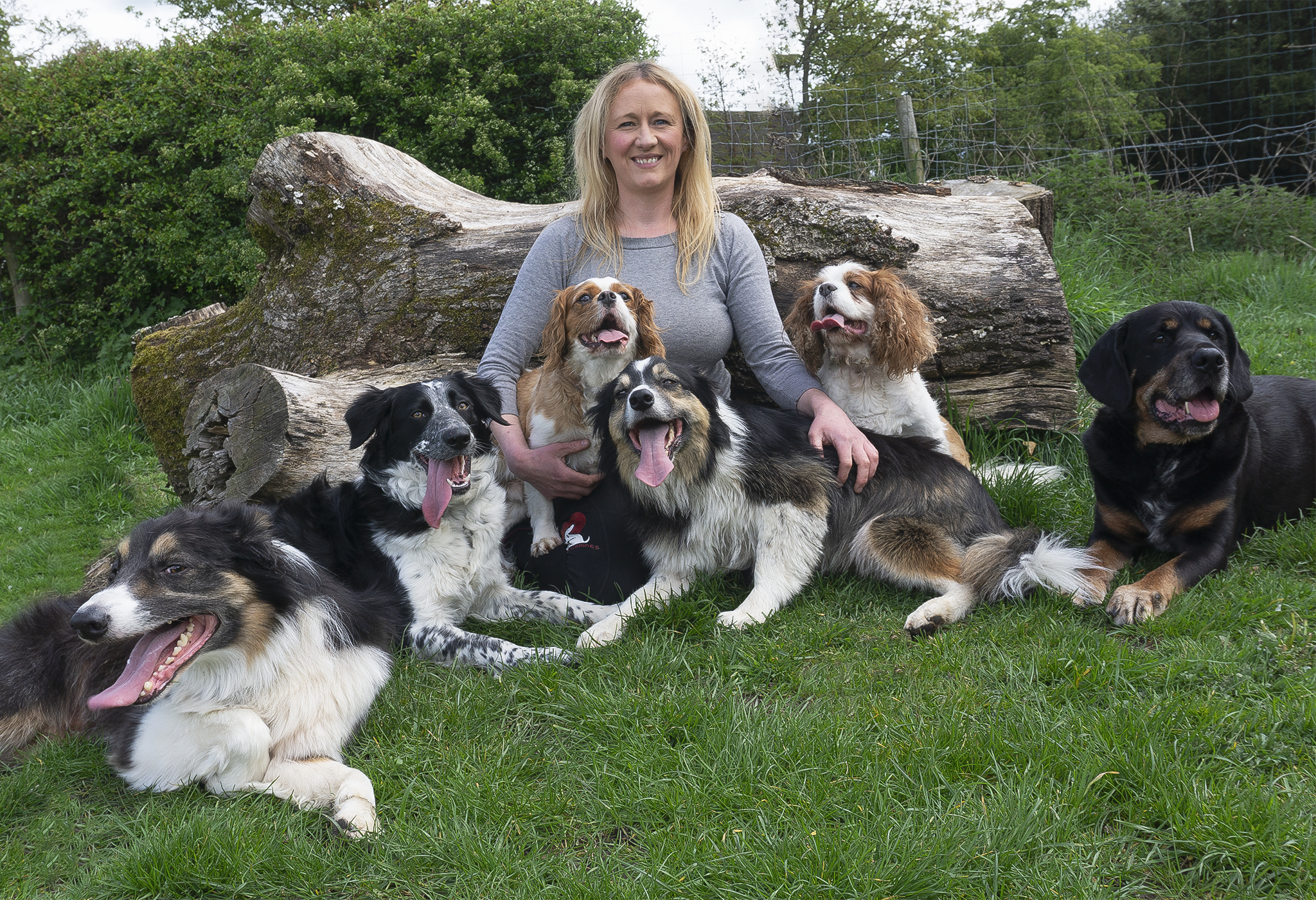 Sarah and pooch's   Friends and Canines